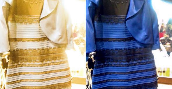 blue or gold dress